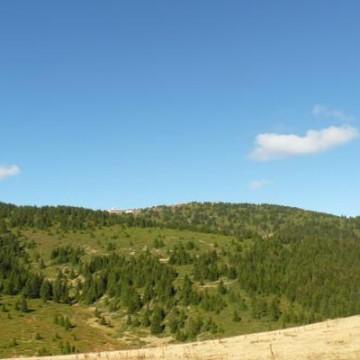 №85 Родопи – връх Голям Перелик